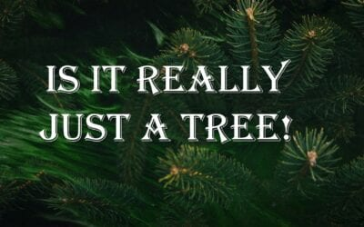 Is It Really Just a Tree?