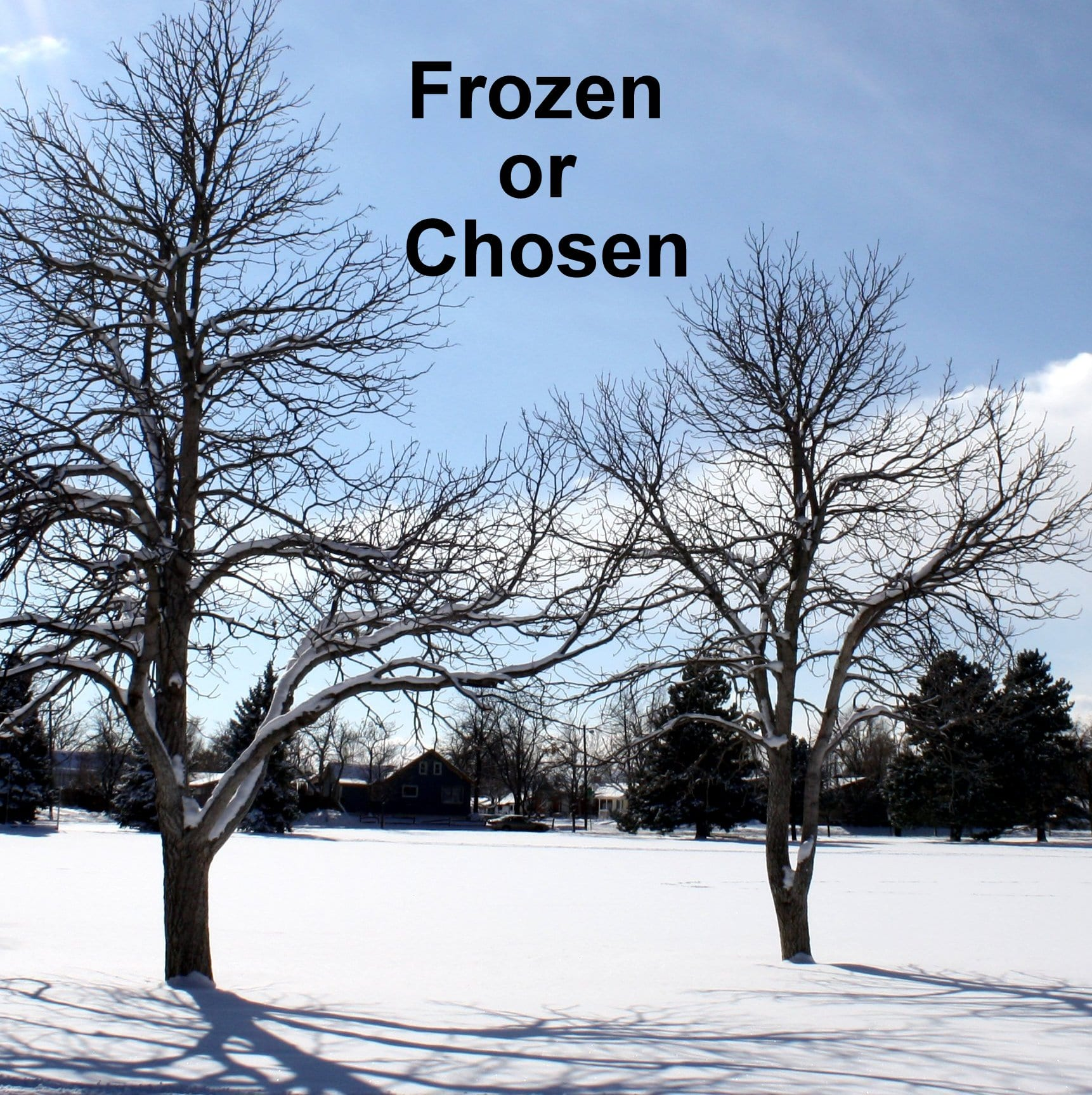 Frozen Chosen!