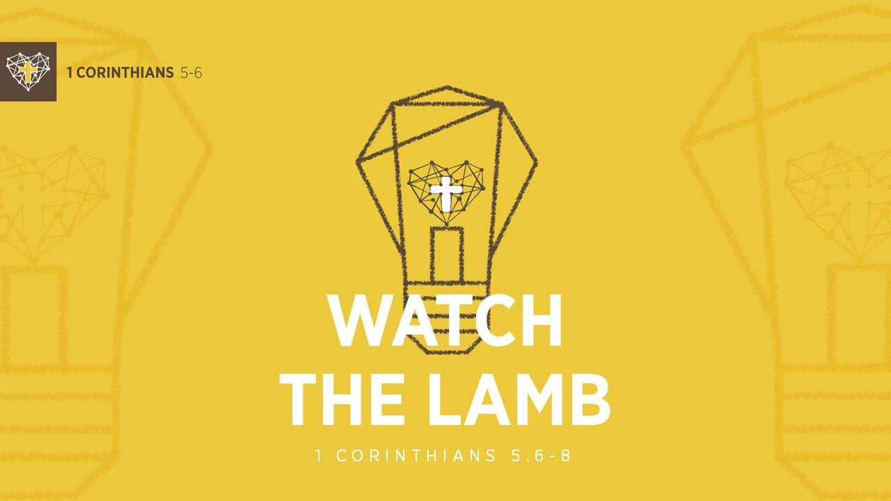 Radiant Culture : Watch the Lamb