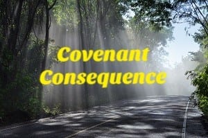 The Shepherd Covenant