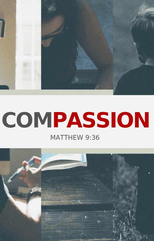 The Visibility of Compassion