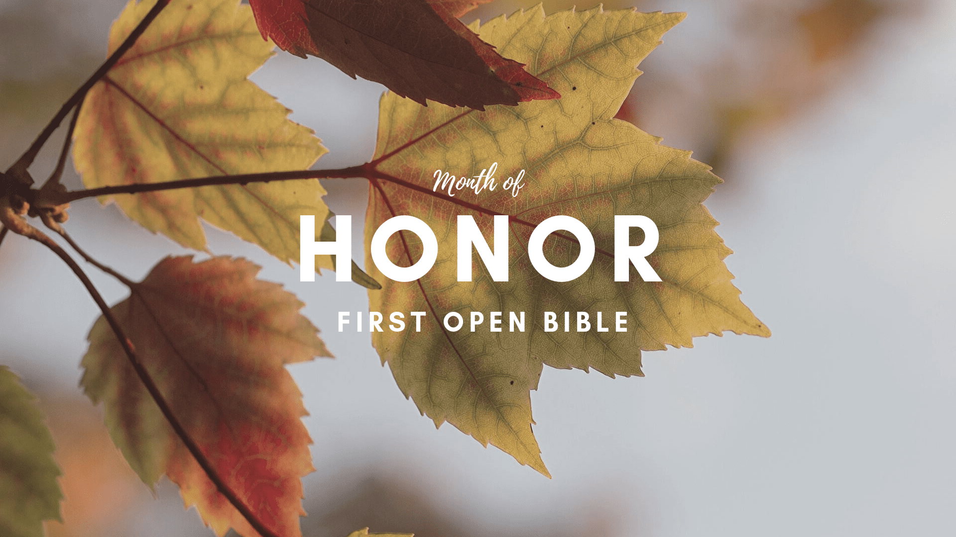 Honor – 50 yrs of Ministry