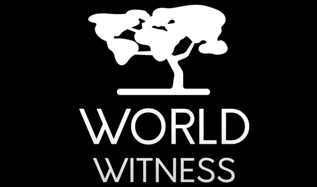 World Witness Update