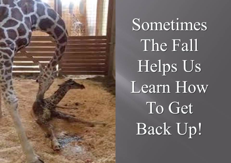 Sometimes The Fall Helps Us Learn How To Get Back Up