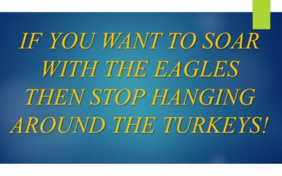 Stop Hanging Around Turkeys