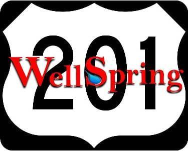 Wellspring 201
