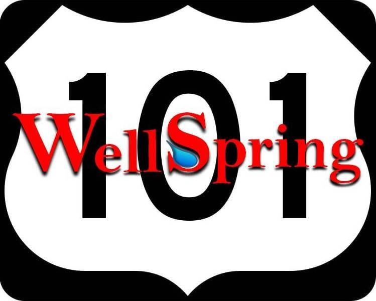 Wellspring 101