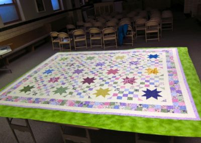 Quilt to be Auctioned 2014