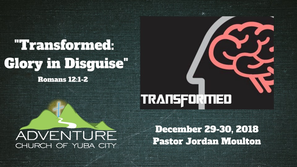 Transformed: Glory In Disguise
