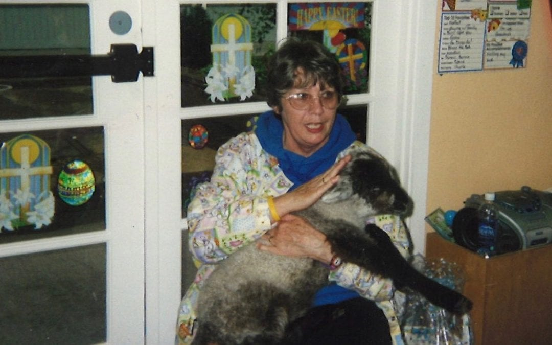 Shepherding 'Little Lambs'